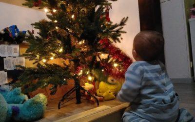 Comment ritualiser avec des enfants – Les rites et célébrations de la roue de l'année, Jane Meredith